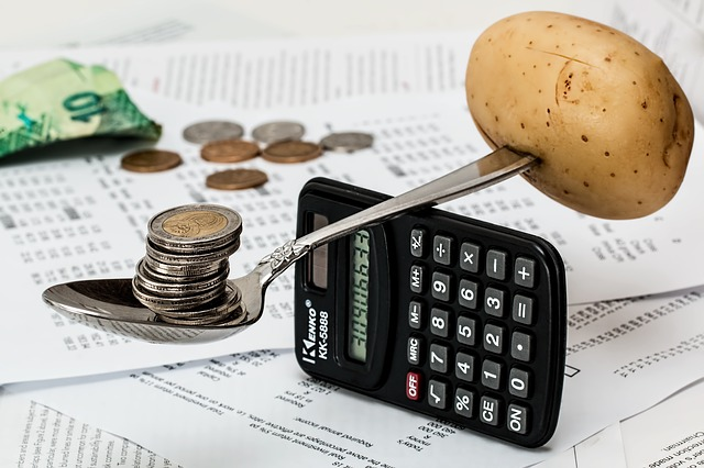 Money and potato balanced on a calculator.