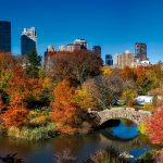 Central Park - There are numerous autumn things you must do in NYC.