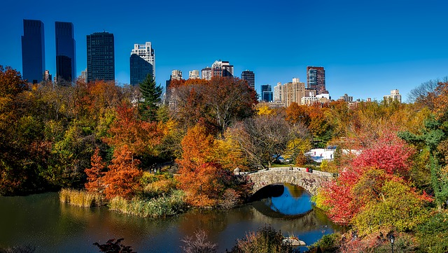 Perfectly autumn things you must do in NYC this fall