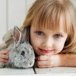 Rabbit which is very sensitive animal so you should learn how to move with exotic pet