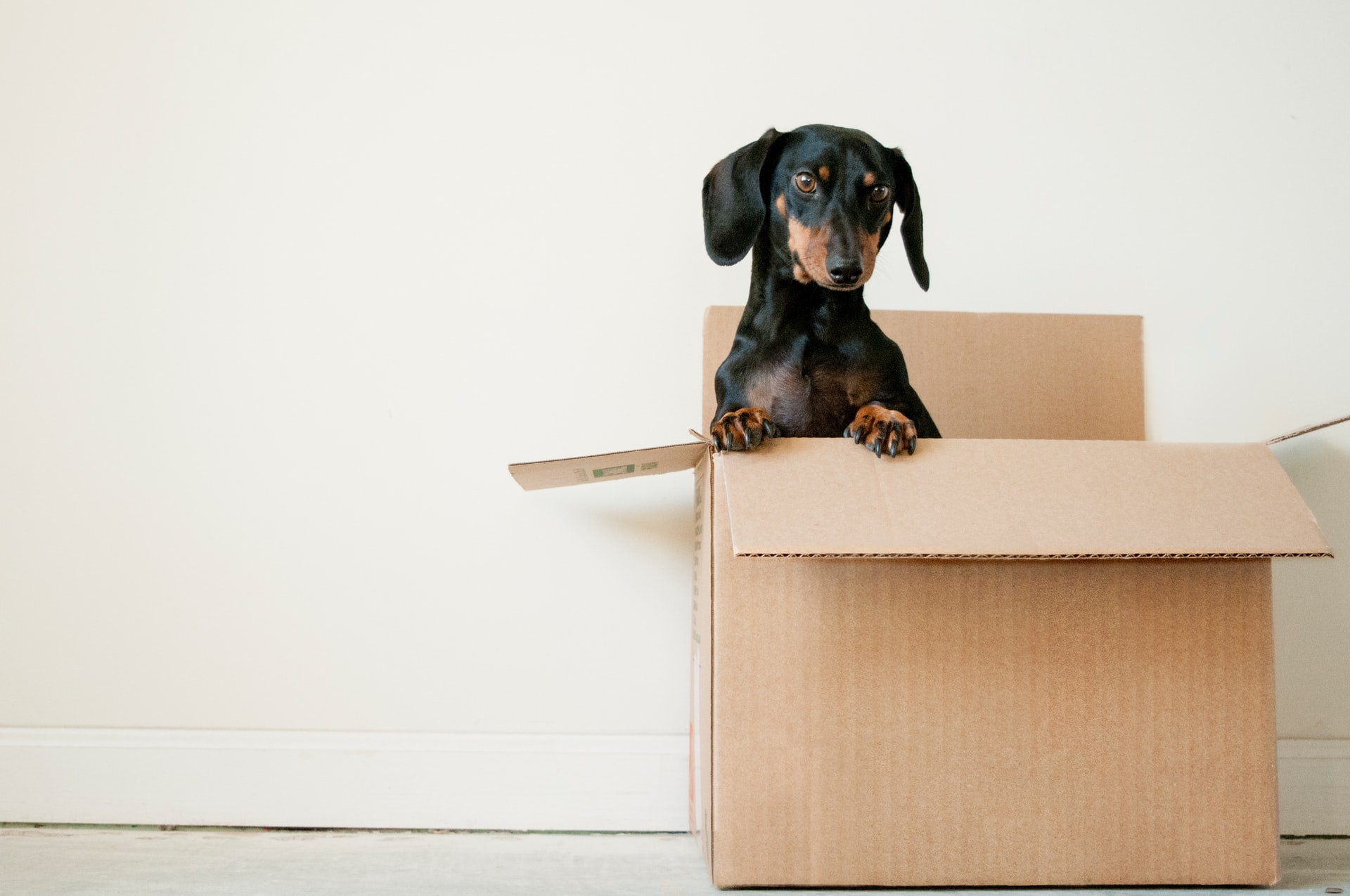 How to choose the right size moving boxes