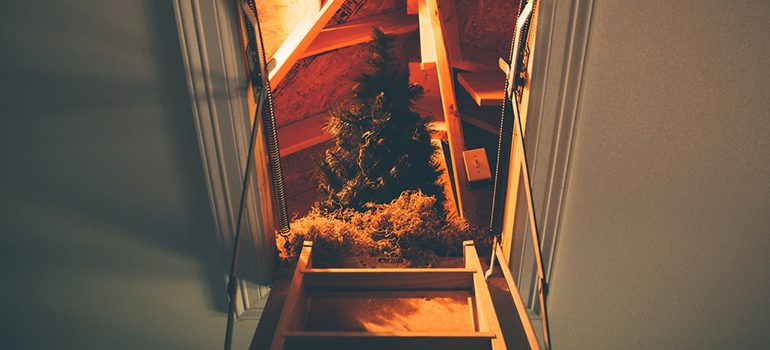 Guide to packing your attic before moving