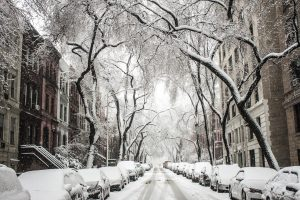 Brooklyn neighborhood during winter