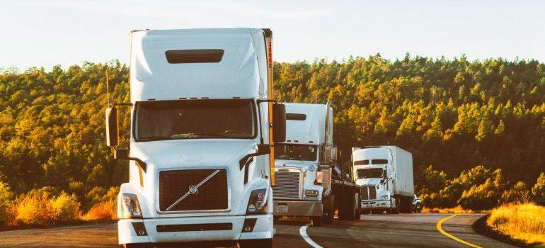 3 white moving trucks